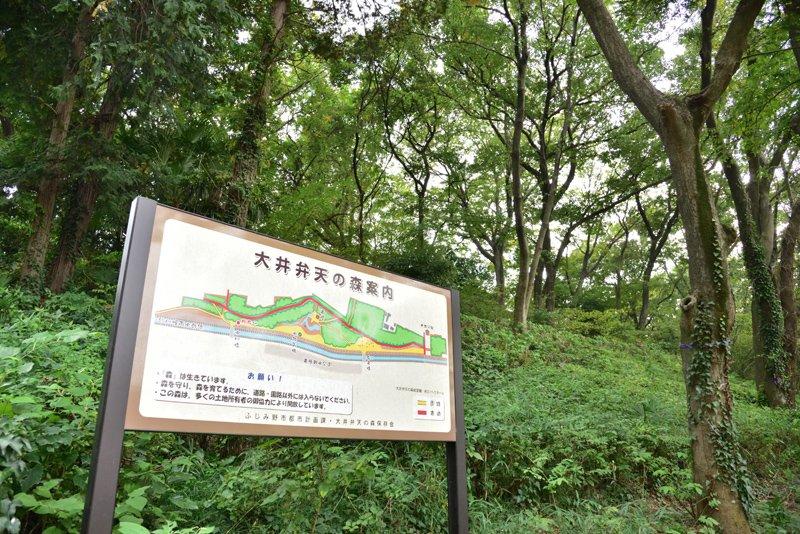 208850_33-01kamifukuokafujiminotsuruse