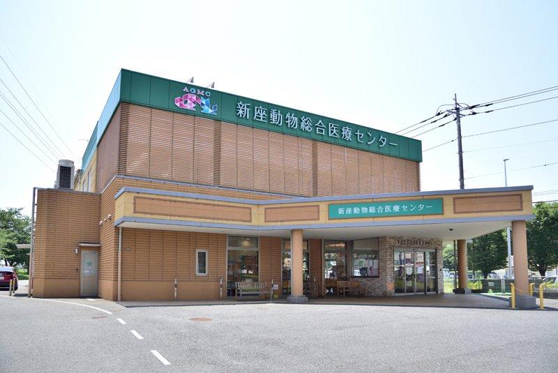 250684_14-01mizuhodaishingashi