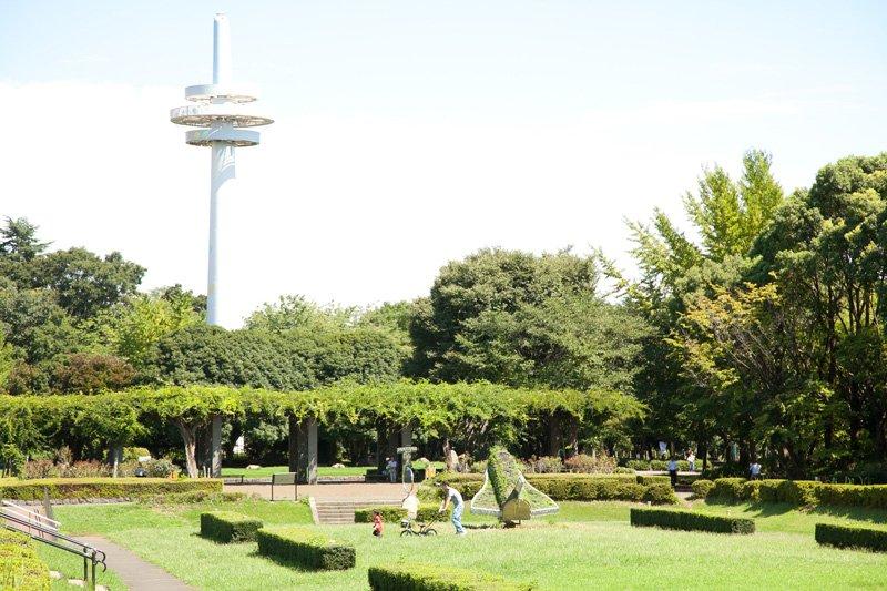 広大な敷地を誇る「所沢航空記念公園」